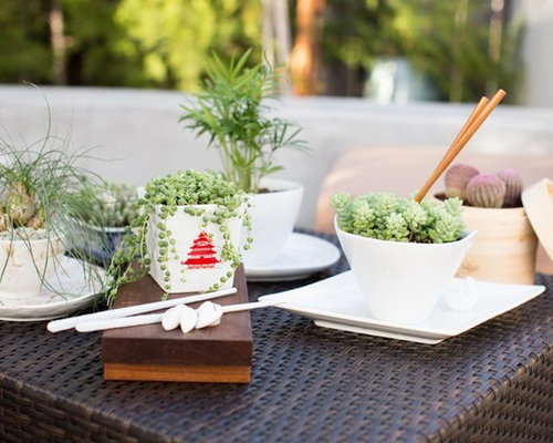 Dish Garden Home Design Ideas Pictures Remodel and Decor