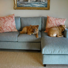 Eclectic Sofas Amp Couches Houzz