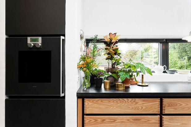 Køkken: sig det med urter   indret med friske krydderier i køkkenet
