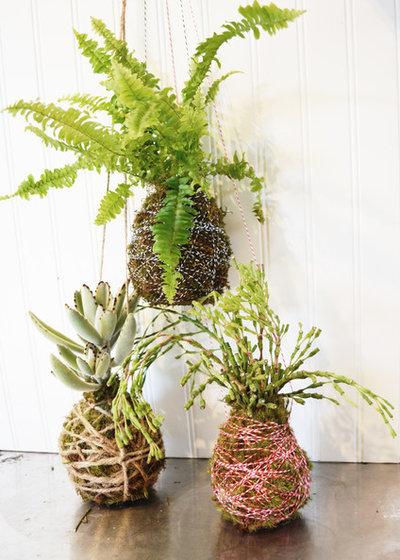 diy lassen sie ihre pflanzen schweben so macht man kokedamas. Black Bedroom Furniture Sets. Home Design Ideas