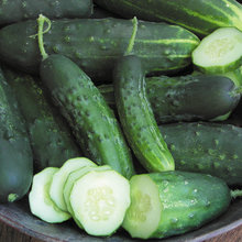 Summer Crops: How to Grow Cucumbers