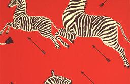 Zebras Wallpaper, Masai Red