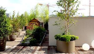 Les plantes couvre sol une belle alternative au gazon for Quelles plantes pour balcon