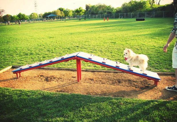 Designed For Dogs 5 Fantastic Dog Parks Across The U S
