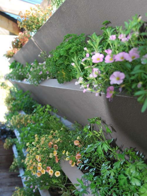 Vwall vertical planter boxes for Vertical planter boxes
