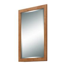 Shop Craftsman Bathroom Mirrors On Houzz