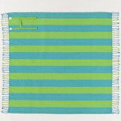 Blue and Green Stripe Rio Picnic Blanket