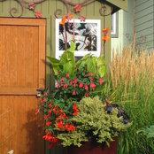 Seasonal Color Pots LLC's photo