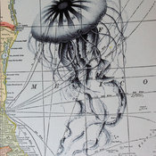 Jellyfish Print on Vintage Map Gulf of Mexico