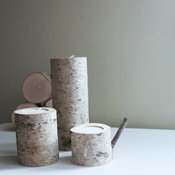 Natural White Birch Wood Candleholders by Urban + Forest