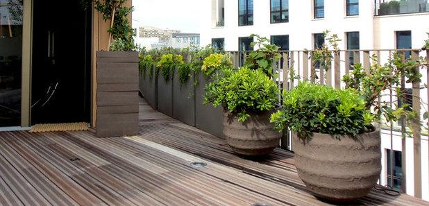 Quelles plantes pour des pots d 39 ext rieur xxl for Plante en pot pour terrasse
