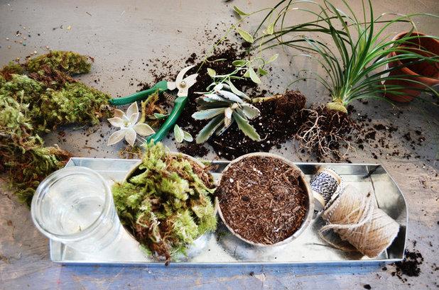 Gør det selv: Lav en japansk Kokedama-have