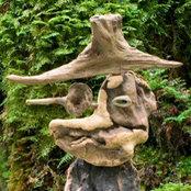 屋久島 Driftwood Art Gallery 森のもののけさんの写真