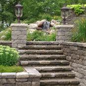 Aquatic Gardens & Landscaping, Inc.'s photo