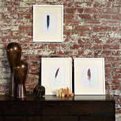 Scott Lifshutz Feather Wall Art