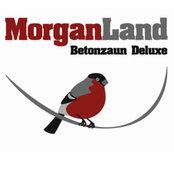 Foto von MorganLand Betonzaun Deluxe