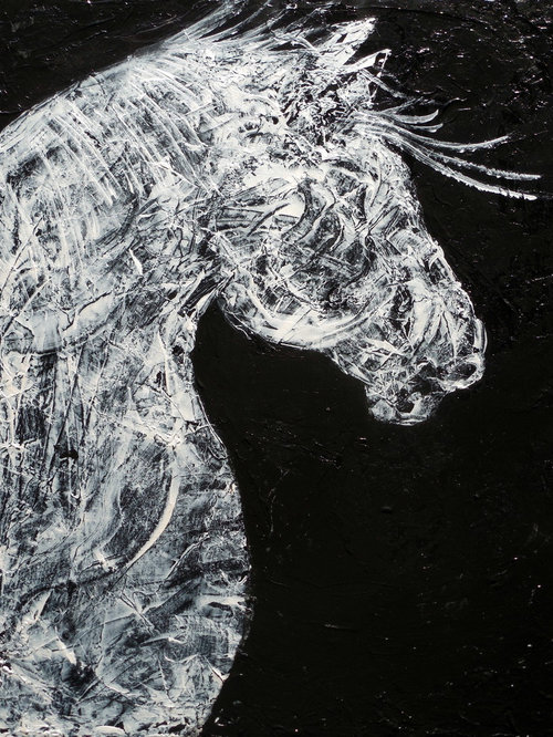 black and white horse art by holly anderson contemporary abstract modern. Black Bedroom Furniture Sets. Home Design Ideas
