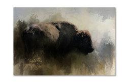 Jai Johnson 'Abstract American Bison' Canvas Art, 47 x 30