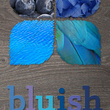 Blue Walls + Gray Floors