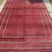Big Stunning Khoja Roshnai Rug by Nomad Carpets