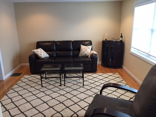 Help With My Living Room Too Brown