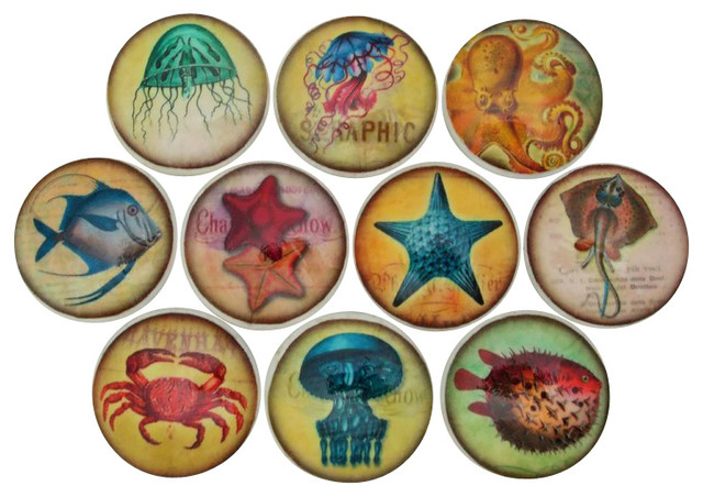 Set of 10 Colorful Sealife Cabinet Knobs - Beach Style - Cabinet And Drawer Knobs - by Twisted R ...