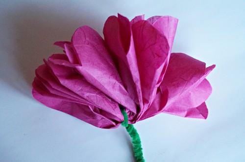 Papierblumen Aus Seidenpapier Basteln Bildderfraude