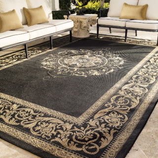 Medallion Outdoor Rug Traditional Rugs By FRONTGATE