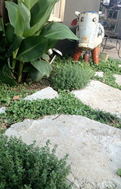 Sustainable landscape design rustic newcastle for Sustainable garden design