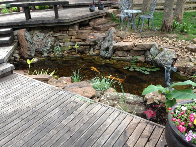 Ecosystem koi ponds and water gardens by continental ponds for Garden pool ecosystem