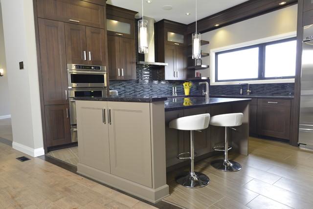 New Contemporary Energy Efficient Home - Contemporary ...
