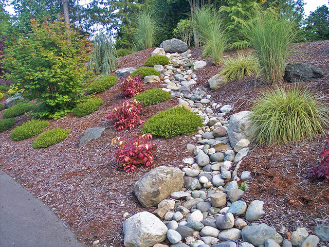 landscaping on the olympic peninsula - traditional - seattle