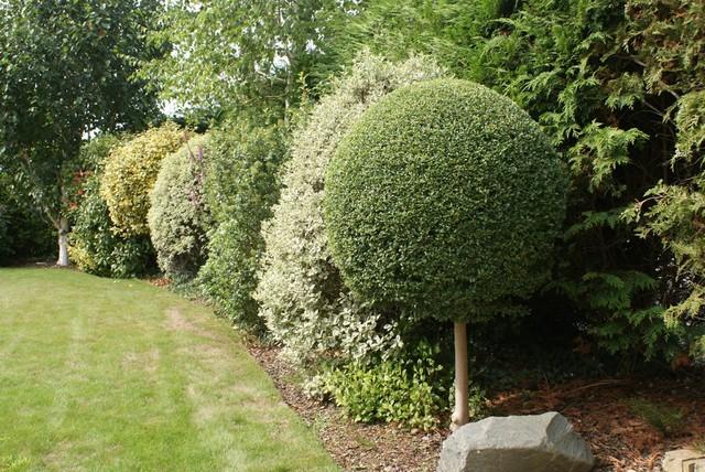 Garden design landscaping billericay essex for Garden design jobs essex