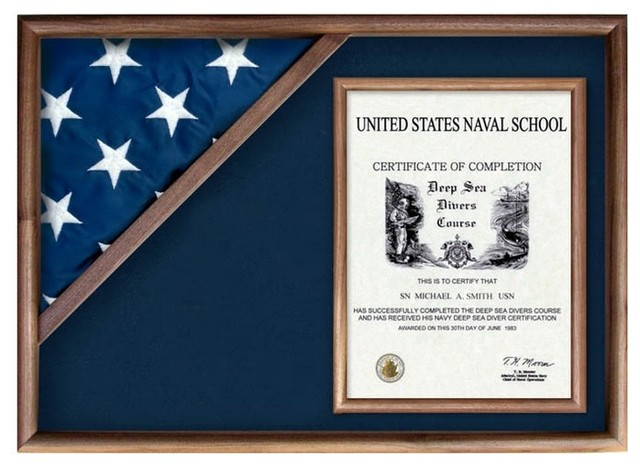Flag And Military Insignia Display Cases Modern