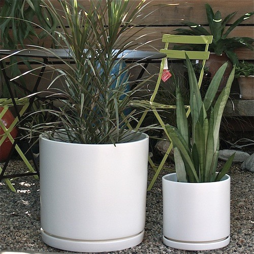 Gainey Cylinder Ceramic Pots Modern Indoor Pots And