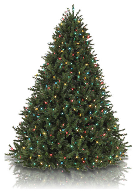Balsam Hill 9 Classic Blue Spruce Artificial Christmas Tree - Clear Lights - Modern - Christmas ...