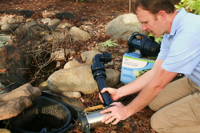 New koi pond pump installation atlanta by paradise for Pond pump placement
