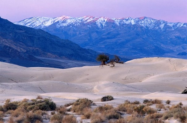 Desert and mountains photo wall mural contemporary for Desert wall mural