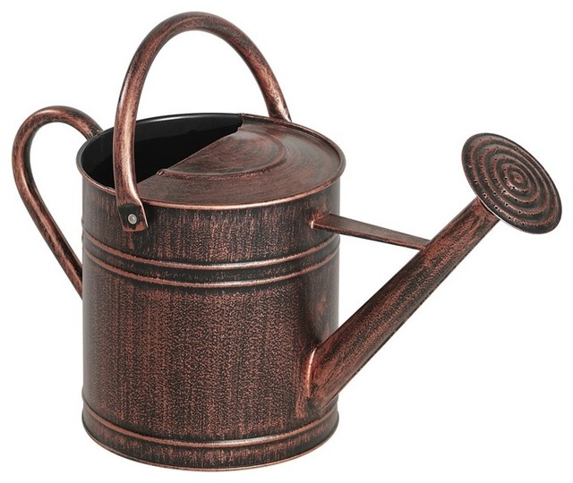 living accents wac6065 watering can 2 gallon bronze