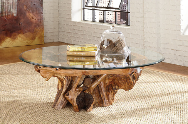 Tree Root Glass Top Coffee Table Hidden Treasures By