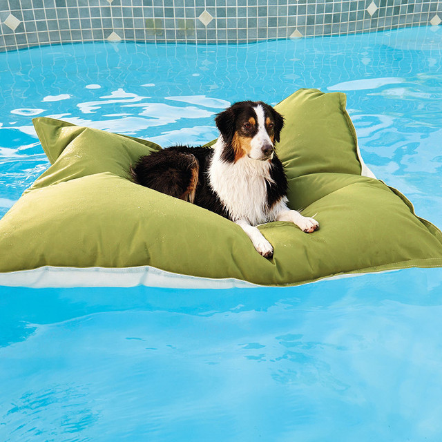 Pet Kai Float Dog Bed Traditional Dog Beds By Frontgate