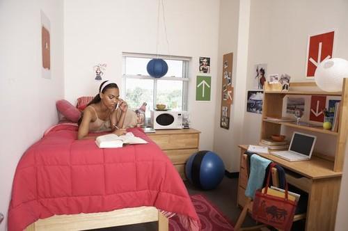 Decorating College Dorms Contemporary Apartment Bedroom Interior Part 81