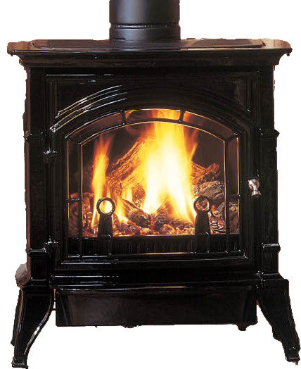 Majestic CSDV30SNVEMBC Concorde Direct Vent Gas Stove - Modern - Freestanding Stoves - by ...