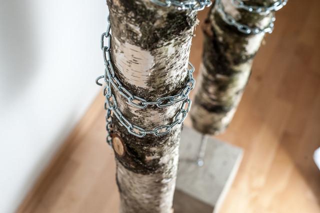 Wood Birkenstamm