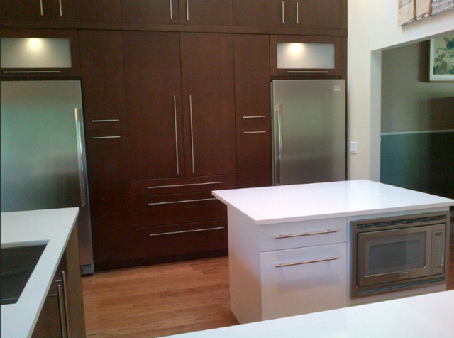 Executive Cabinetry - Contemporary - Kitchen - other metro - by Florida Cabinet Sales & Service ...