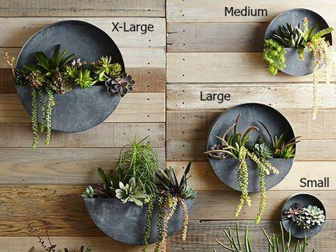 Orbea Circle Zinc Wall Planters Contemporary Indoor