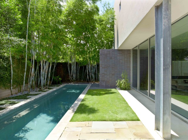 Courtyard House Modern Pool Houston By MaRS Mayfield And Ragni Studio