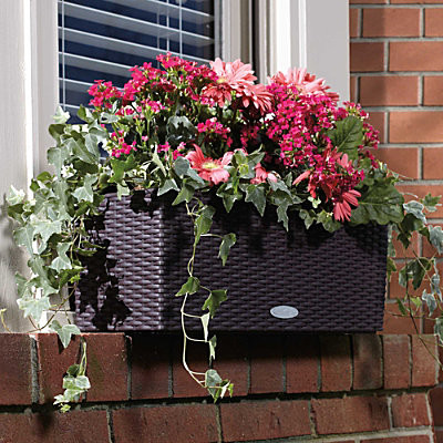 Self Watering Rectangular Planter 20 Contemporary