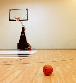 Indoor Home Gym By Snapsports Cool Custom Basketball