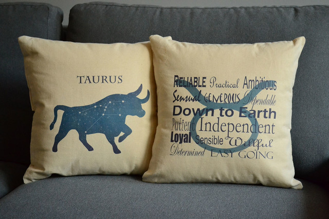 Modern Family Pillows : RoomCraft Zodiac Decorative Throw Pillows and Covers - Modern - Family Room - Jacksonville - by ...